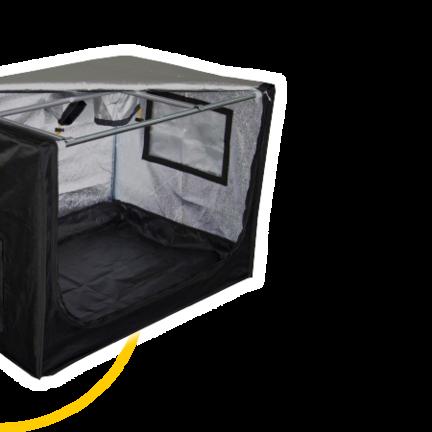 Mammoth  Prime Propagators, Duals & Dryers