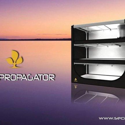 Dark Propagator