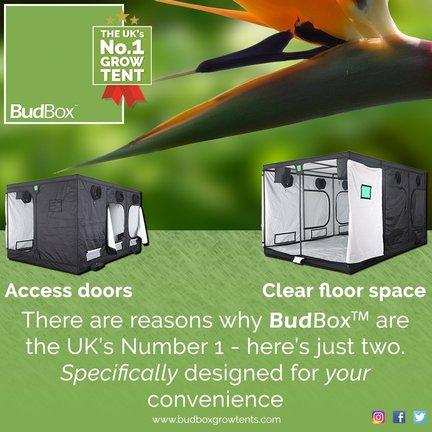 Budbox GT Series Kweektent