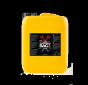 BAC F1 Refuerzo Extremo 5 Litros