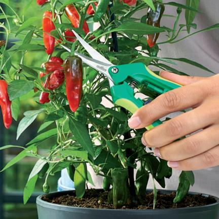 Trimming & pruning scissors