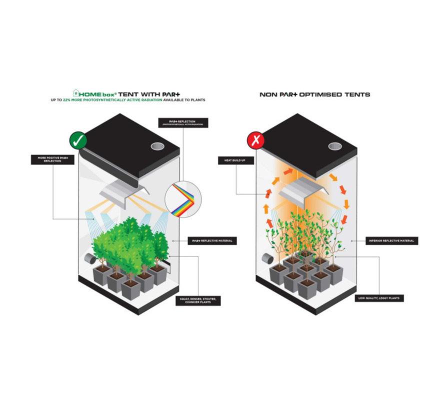 Homebox Ambient Q100 + Plus Kweektent 100x100x220 cm