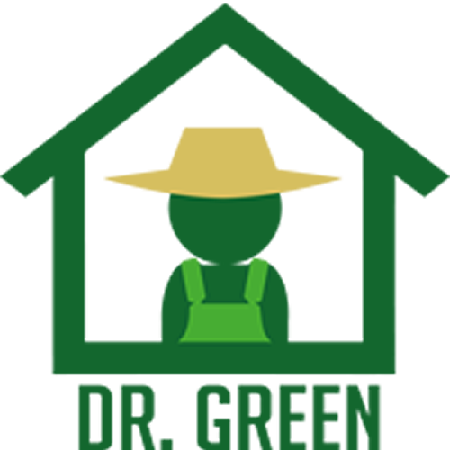 Dr Green grow tent