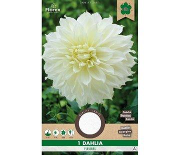 Florex Dahlia Decorative Dinnerplate Fleurel White 1 pc.