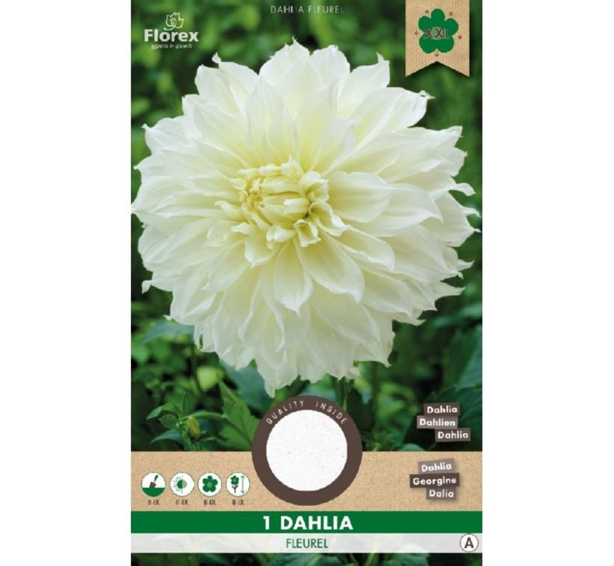 Dahlia Decoratief Dinnerplate Fleurel Wit 1 stuk
