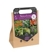 "Florex Spring Bulbs ""Naturalizing"" Pick-up Bag"