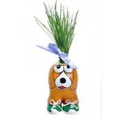 Buzzy Seeds Munakuppi - Hond