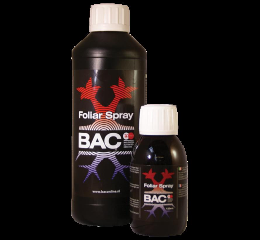 BAC Blattnahrung Spray 120 ml