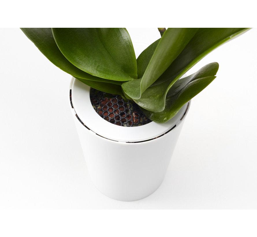 Boskke Sky Planter Recycled Blumentopf Schwarz Groß