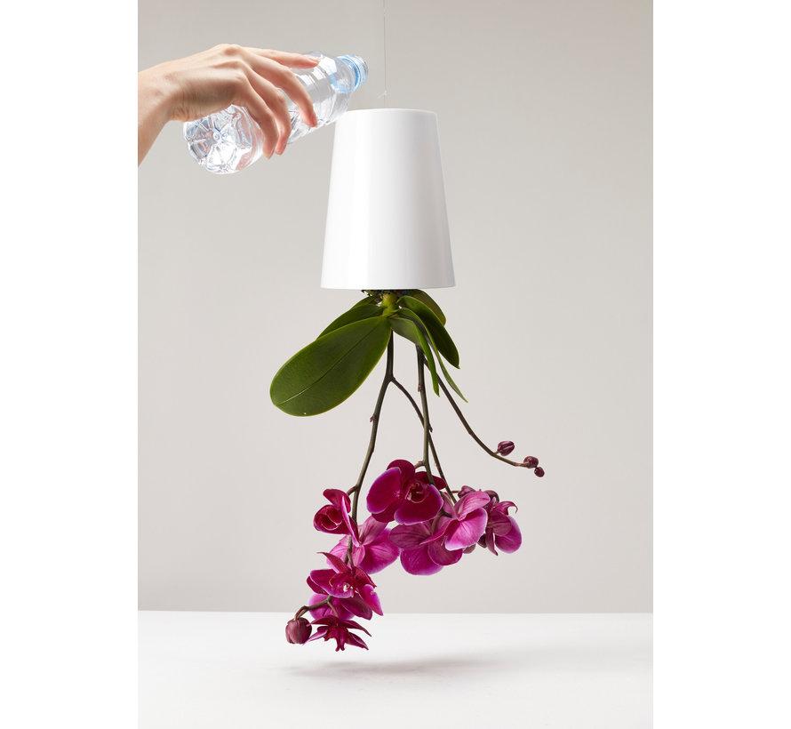 Boskke Sky Planter Recycled Blumentopf Schwarzer Klein