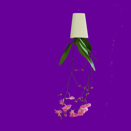 Hängende Blumentöpfe von Boskke