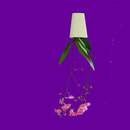 Hangbloempotjes en verticale wanden van ACD, Bosske en Minigarden