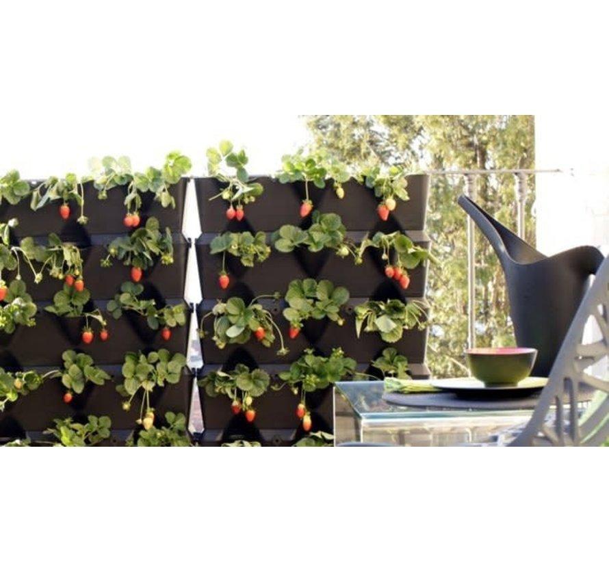 Minigarden Vertical Zwart 3 Module Starterset