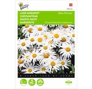 Buzzy Seeds Lage Margriet Silver Princess