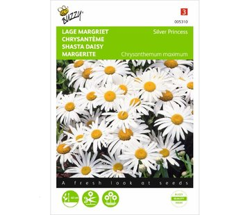 Buzzy Lage Margriet Silver Princess