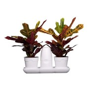 Minigarden Basic S Pots Flower Pot White