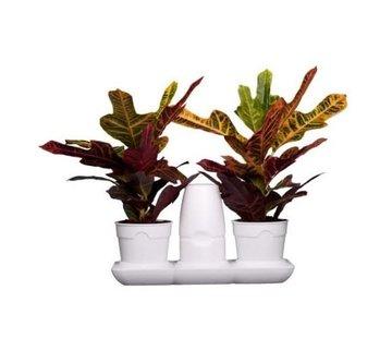 Minigarden Basic S Pots Flower Pot White