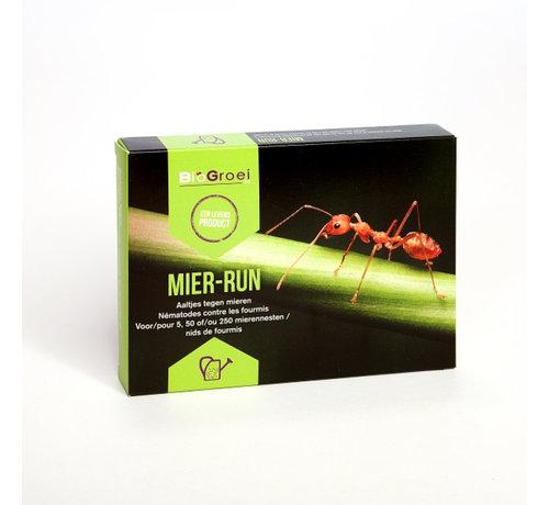 Biogroei Mier-Run Aaltjes Nematoden tegen mieren