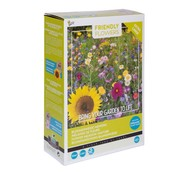Buzzy Grow Gifts Friendly Flowers XL Blumenmischung Blumenwiese 50m²