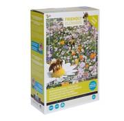 Buzzy Grow Gifts Friendly Flowers XL Mezcla de Flores para Abejas 50m²