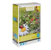Buzzy Grow Gifts Friendly Flowers XL Blumenmischung für Marienkäfer 50m²