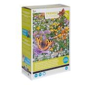 Buzzy Grow Gifts Friendly Flowers XL Blumenmischung für Schmetterlinge 50m²