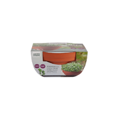 Buzzy Grow Gifts Microgreens Terracotta Flower Pot Kale