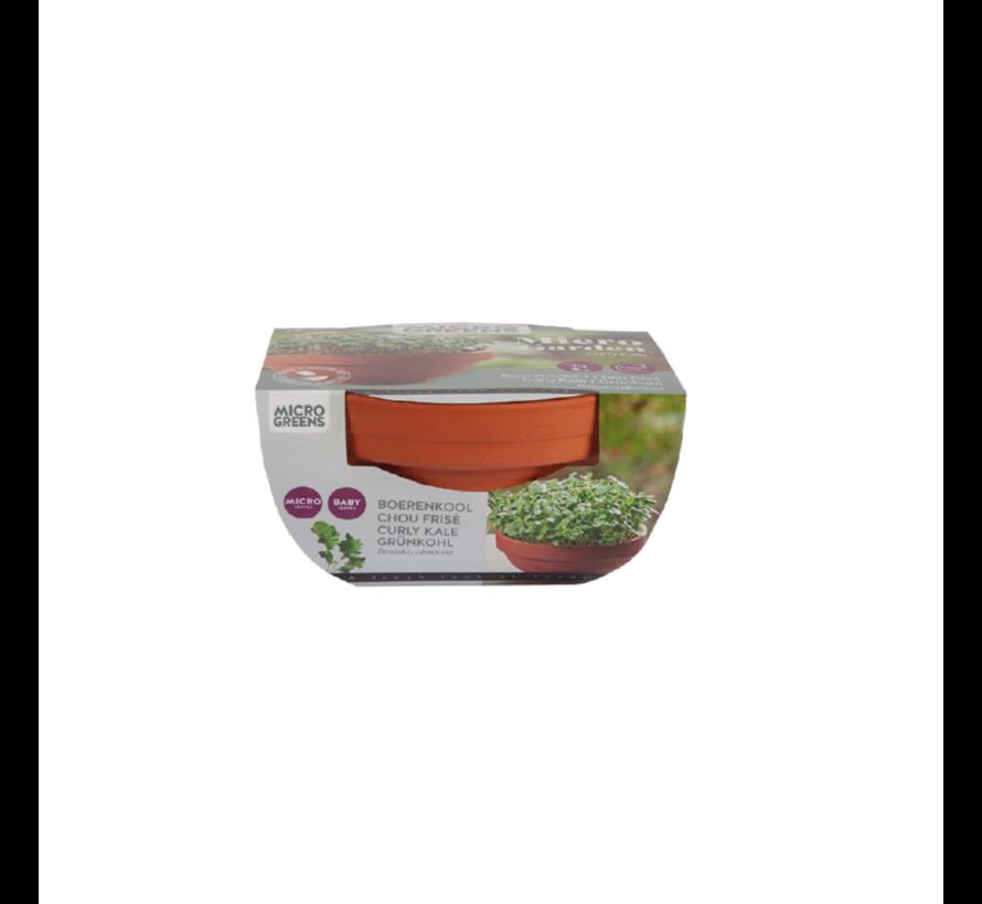 Microgreens Terracotta Bloempot Boerenkool