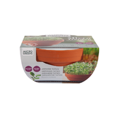 Buzzy Grow Gifts Microgreens Terracotta Flower Pot Tatsoi