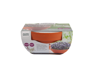 Buzzy Grow Gifts Microgreens Terracotta Flower Pot Red Mizuna