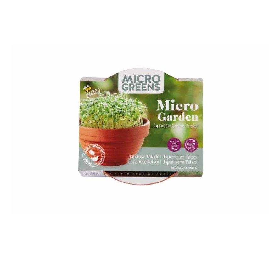 Buzzy Grow Gifts Microgreens Terracotta Bloempot Tatsoi
