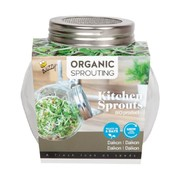 Buzzy Grow Gifts Tarro de Vidrio de Germinación Orgánico Daikon