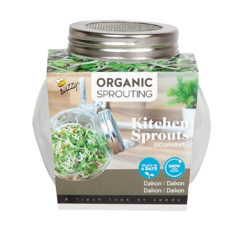 Buzzy Grow Gifts Organic Glass Sprouting Jar Daikon