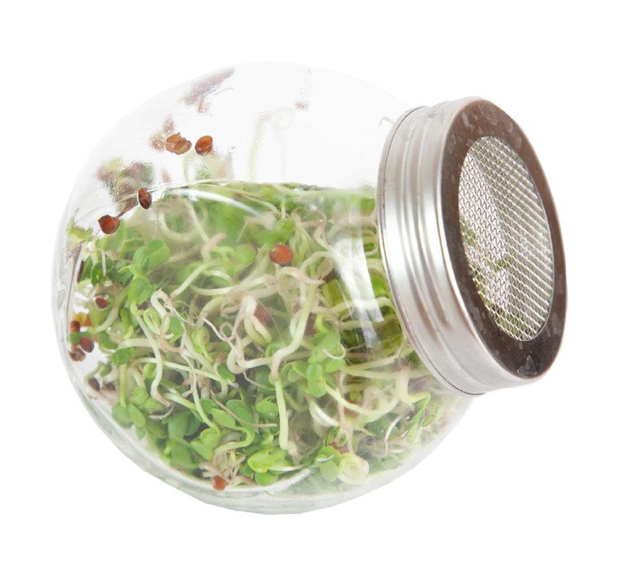 Buzzy Grow Gifts Bio Kiem Pot Glas Spruitgroente Daikon
