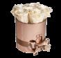 Flowerbox Longlife Zara Champagne