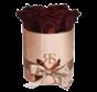 Flowerbox Longlife Zara Choco