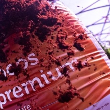 Plagron 100% coco nutriente básico y sustrato