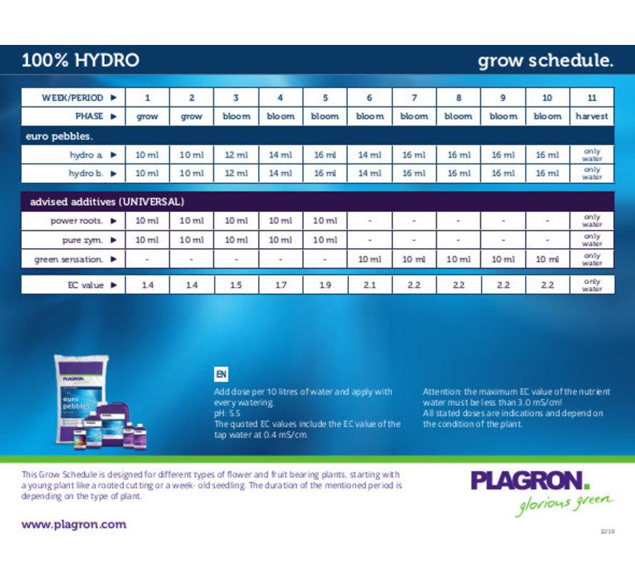 Plagron Hydro A&B Basisdünger 1 Liter