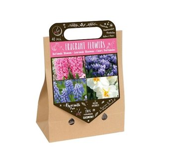 "Florex Autumn Bulbs ""Scented Flowers"" Pick-up Bag"