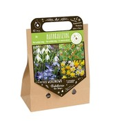 "Florex Autumn Bulbs ""Naturalizing"" Pick-up Bag"