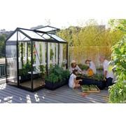 ACD Piccolo P03 Prestige Urban Greenhouse RAL Color Frame