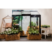ACD Miccolo M03 Prestige Urban Wall Greenhouse RAL Color Frame