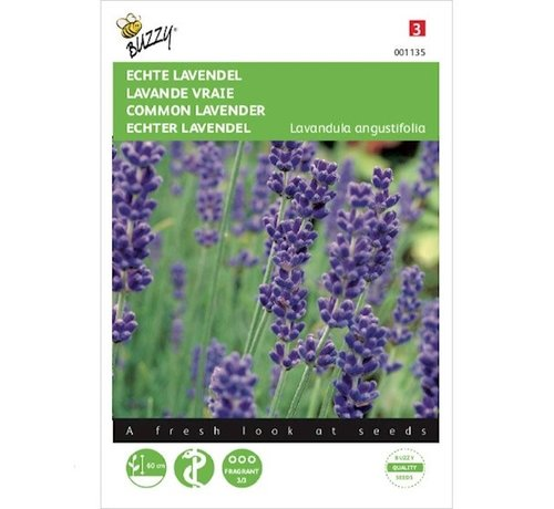 Buzzy Common Lavender Seeds