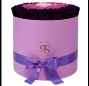 Rosuz Flowerbox Longlife Aaliyah Purple Violet Pink