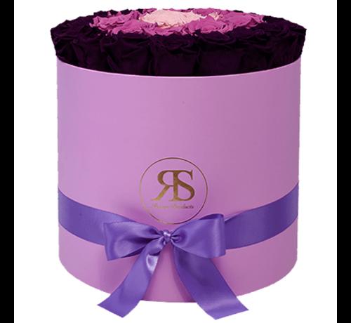 Rosuz Flowerbox Longlife Aaliyah Paars Violet Roze