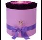 Flowerbox Longlife Aaliyah Paars Violet Roze