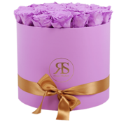 Rosuz Flowerbox Longlife Aaliyah Violett