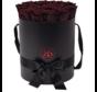 Flowerbox Longlife Aisha Schokolade