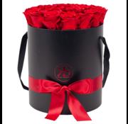 Rosuz Flowerbox Longlife Aisha Rot