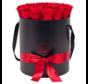 Flowerbox Longlife Aisha Rood